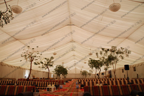 Clear Span 30 x 40m Large Event Tents